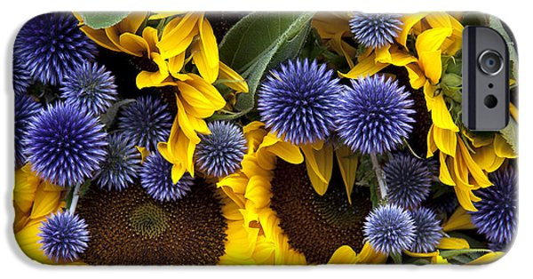 Alliums iPhone Cases - Allium and sunflowers iPhone Case by Jane Rix