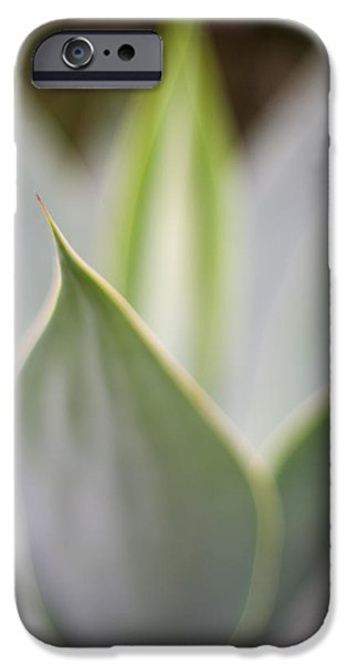 Big Island iPhone Cases - Aloe Mirage iPhone Case by Mike Reid