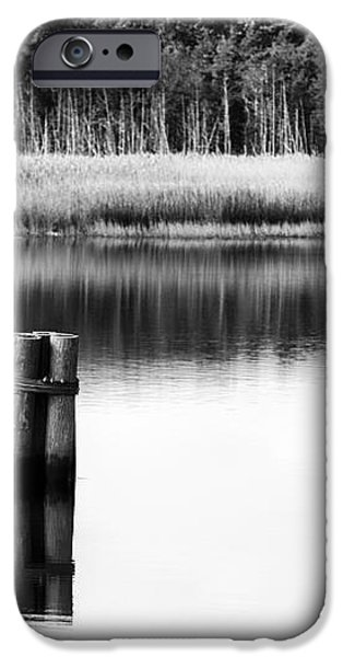 Alone in the Pine Barrens iPhone Case by John Rizzuto