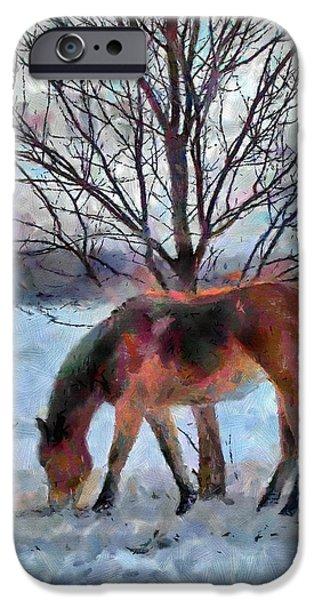 American Paint in Winter iPhone Case by Jeff Kolker