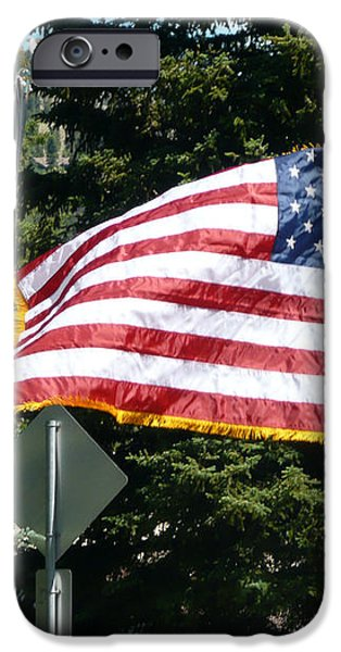 American Pride iPhone Case by Max Mullins