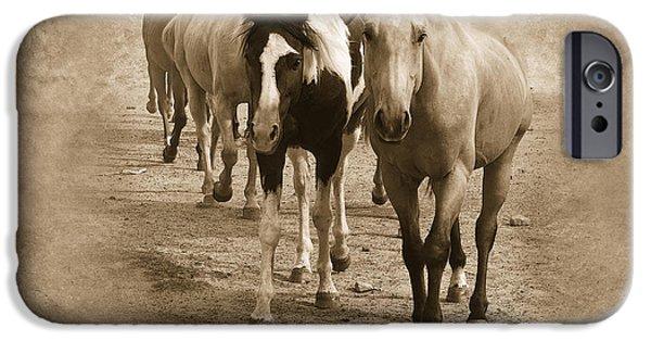 American Quarter Horse iPhone Cases - American Quarter Horse Herd in Sepia iPhone Case by Betty LaRue