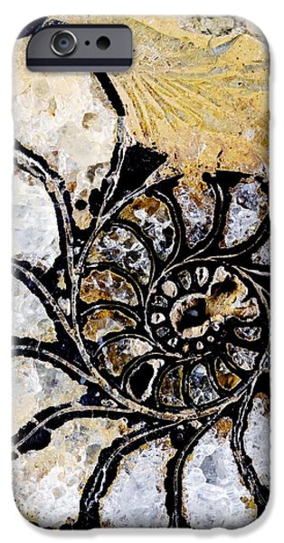 Palaeontology iPhone Cases - Ammonite Fossil iPhone Case by Dirk Wiersma