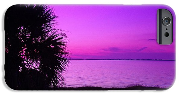Palm Tree Greeting Cards iPhone Cases - AndTthen It Was Purple iPhone Case by Florene Welebny