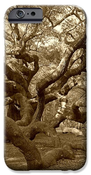 Tree Art Print iPhone Cases - Angel Oak in Sepia iPhone Case by Suzanne Gaff