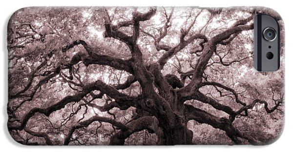 Oak Trees iPhone Cases - Angel Oak Tree iPhone Case by Dustin K Ryan