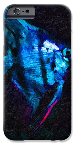 Angelfish iPhone Case by Wingsdomain Art and Photography