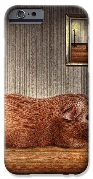 Animal - The guinea pig iPhone Case by Mike Savad
