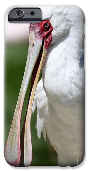 Spoonbill iPhone Cases - Anyone Need a Spatula I Have An Extra . The Spoonbill iPhone Case by Wingsdomain Art and Photography
