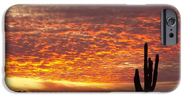 Arizona iPhone Cases - Arizona November Sunrise With Saguaro   iPhone Case by James BO  Insogna