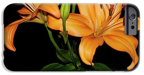 Asiatic Lily iPhone Cases - Asiatic Lily iPhone Case by Carolyn Marshall