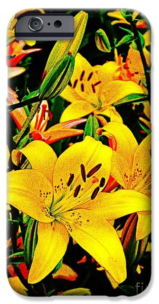 Asiatic Lily iPhone Cases - Asiatics in May  iPhone Case by Chris Berry