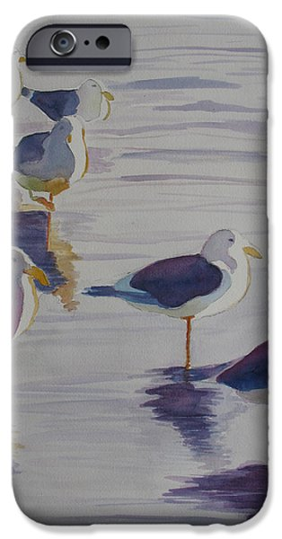Seagull Paintings iPhone Cases - Assorted Gulls iPhone Case by Jenny Armitage