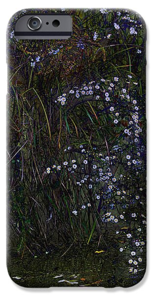 Aster Days iPhone Case by Ron Jones