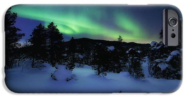 Landscape In Norway iPhone Cases - Aurora Borealis Over Forramarka Woods iPhone Case by Arild Heitmann