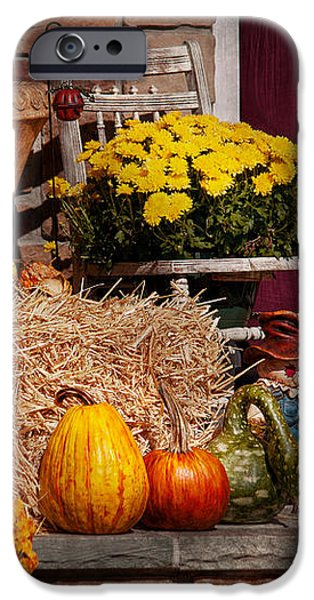 Autumn - Gourd - Autumn Preparations iPhone Case by Mike Savad