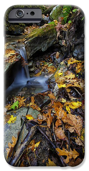 Autumn Photographs iPhone Cases - Autumn at a Mountain Stream iPhone Case by Rick Berk