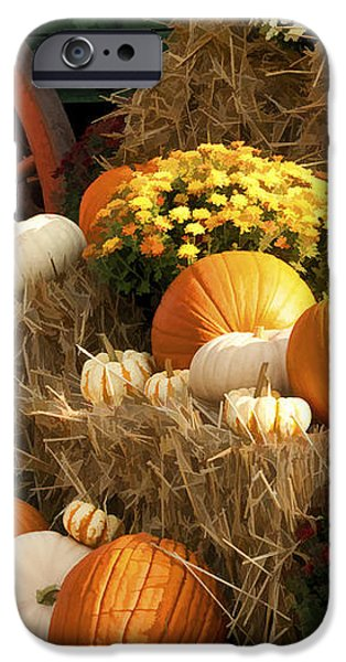 Autumn Bounty iPhone Case by Kathy Clark