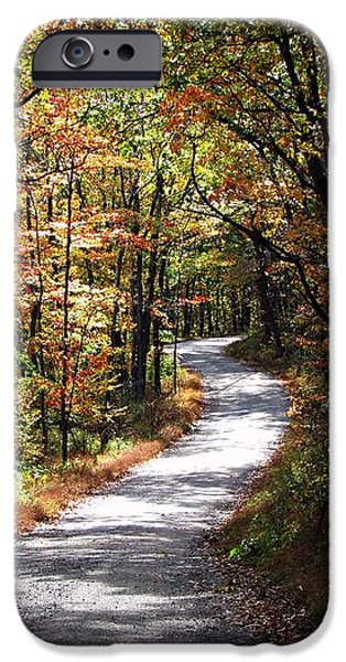 Autumn Country lane iPhone Case by David Dehner