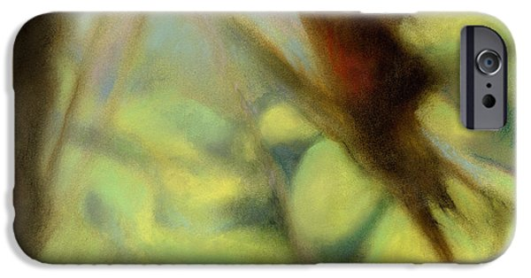 Fall Pastels iPhone Cases - Autumn Dream iPhone Case by Andrew King
