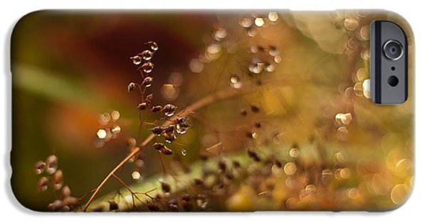 Berry iPhone Cases - Autumn Dream iPhone Case by Mike Reid