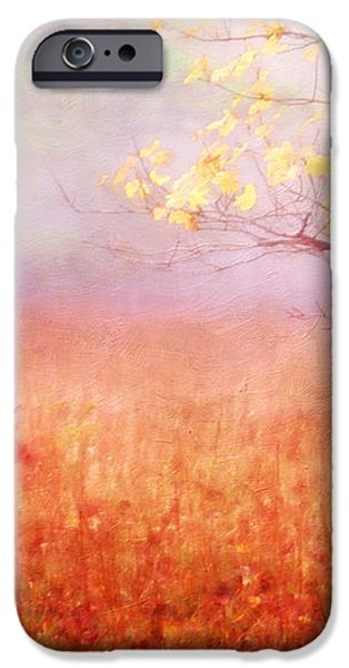 Autumn Dreams iPhone Case by Darren Fisher