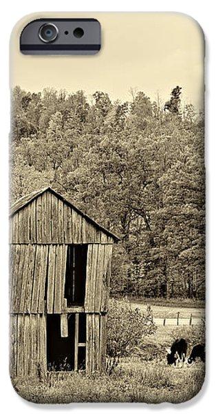 Autumn Farm sepia iPhone Case by Steve Harrington