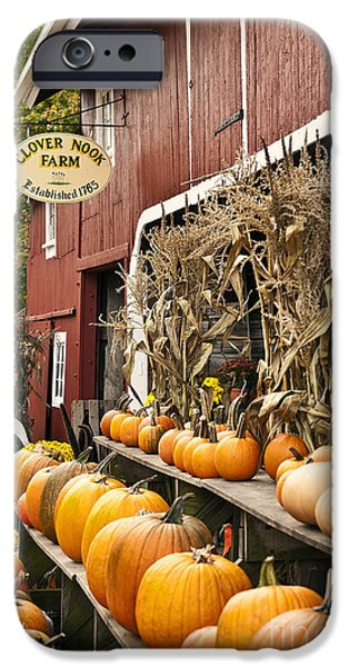 Farm Stand Photographs iPhone Cases - Autumn Farm Stand  iPhone Case by John Greim