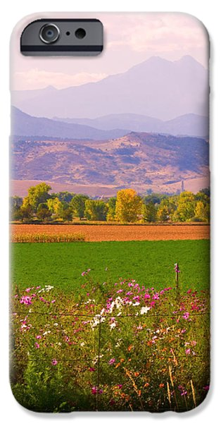 Autumn Flowers at Harvest Time iPhone Case by James BO  Insogna
