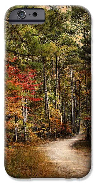 Autumn Scenes Photographs iPhone Cases - Autumn Forest 2 iPhone Case by Jai Johnson