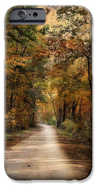 Autumn Forest 3 iPhone Case by Jai Johnson