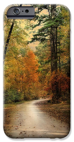 Autumn Forest 4 iPhone Case by Jai Johnson