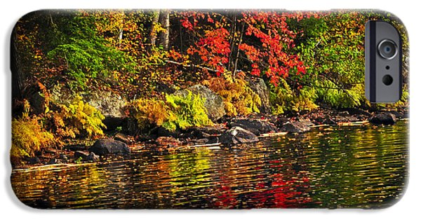 Autumn iPhone Cases - Autumn forest and river landscape iPhone Case by Elena Elisseeva