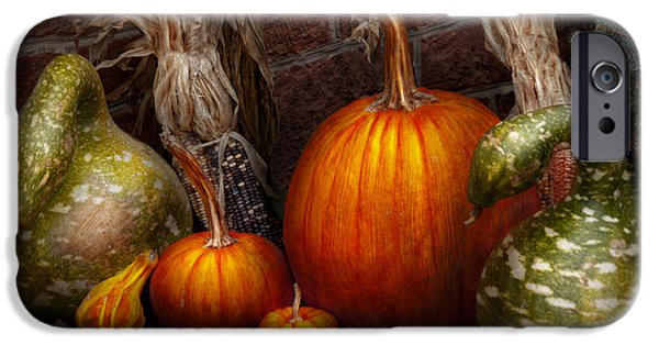 Autumn Scenes Photographs iPhone Cases - Autumn - Gourd - Family get together iPhone Case by Mike Savad