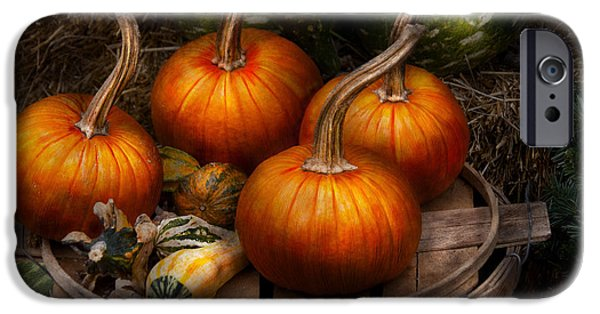 Autumn Scenes iPhone Cases - Autumn - Gourd - Pumpkins and some other things  iPhone Case by Mike Savad