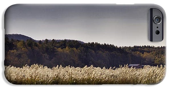 Autumn Photographs iPhone Cases - Autumn Grasses - North Carolina Autumn Scene iPhone Case by Rob Travis