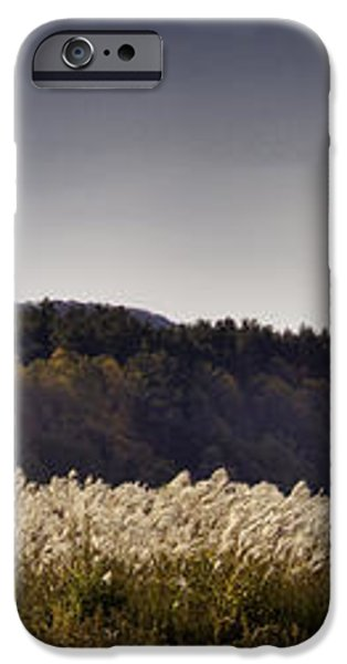 Autumn Grasses - North Carolina Autumn Scene iPhone Case by Rob Travis