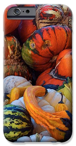 Autumn Harvest iPhone Case by Carol Cavalaris
