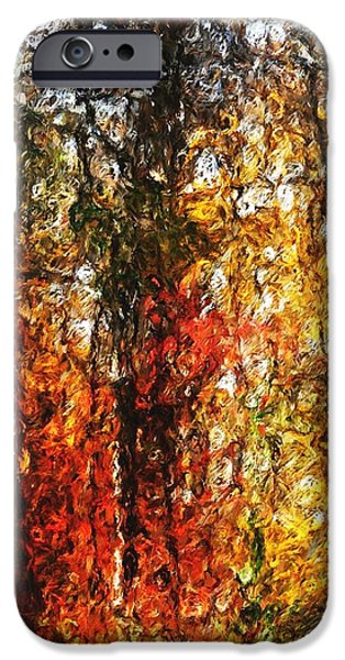 Autumn in the Woods iPhone Case by David Lane
