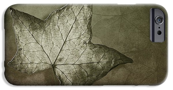 Fallen Leaf iPhone Cases - Autumn iPhone Case by Jan Pudney