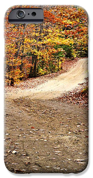 Autumn landscape with a path iPhone Case by Elena Elisseeva