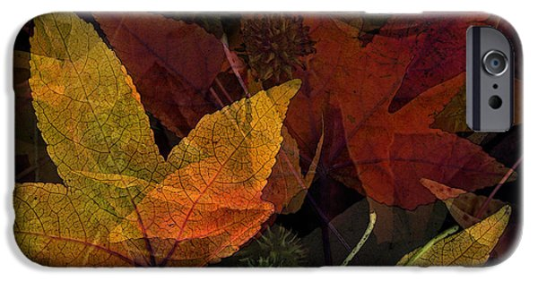 Photo Collage iPhone Cases - Autumn Leaves Collage iPhone Case by Bonnie Bruno