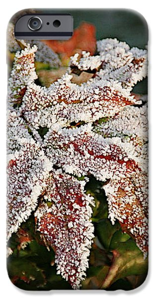 Autumn Leaves in a Frozen Winter World iPhone Case by Christine Till