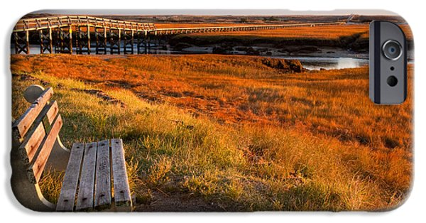 Recently Sold -  - Boston iPhone Cases - Autumn Marshland iPhone Case by Susan Cole Kelly