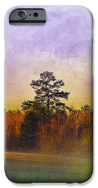 Autumn Morning Mist iPhone Case by Judi Bagwell