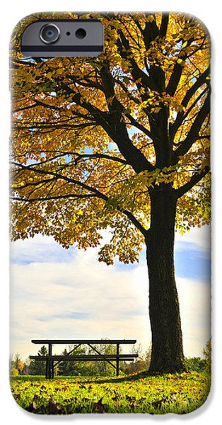 Autumn park iPhone Case by Elena Elisseeva
