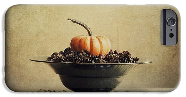 Gourd iPhone Cases - Autumn iPhone Case by Priska Wettstein