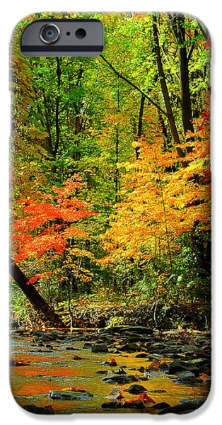 Oak Creek iPhone Cases - Autumn Reflects iPhone Case by Frozen in Time Fine Art Photography