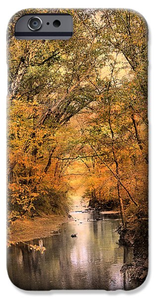 Autumn Riches 2 iPhone Case by Jai Johnson