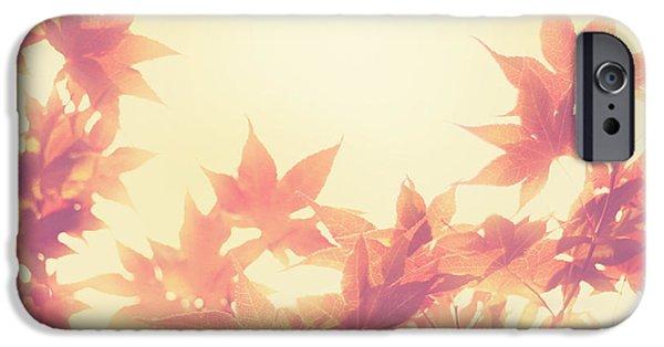 Autumn Photographs iPhone Cases - Autumn Sky iPhone Case by Amy Tyler